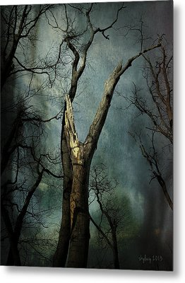Appeal To The Sky Metal Print