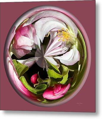 Apple Blossom Globe Metal Print