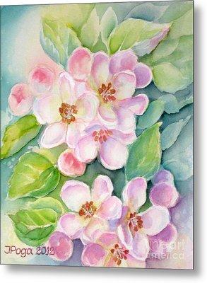 Apple Blossoms 1 Metal Print