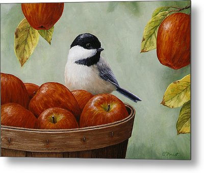 Apple Chickadee Greeting Card 1 Metal Print by Crista Forest