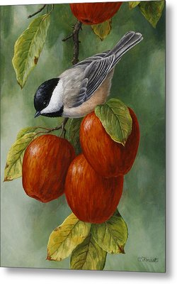 Apple Chickadee Greeting Card 3 Metal Print by Crista Forest