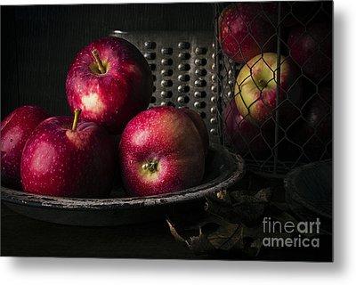 Apple Harvest Metal Print by Edward Fielding