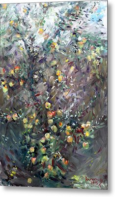 Apple Tree  Metal Print by Ylli Haruni