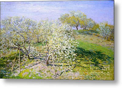 Apple Trees In Bloom 1873 Metal Print by Claude Monet