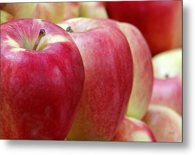 Apples For Sale Metal Print by Ben and Raisa Gertsberg