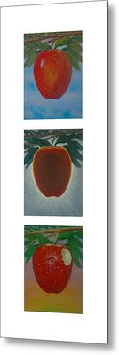 Apples Triptych 2 Metal Print by Don Young