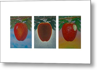 Apples Triptych Metal Print by Don Young