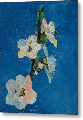 Apricot Blossom Metal Print by Michael Creese