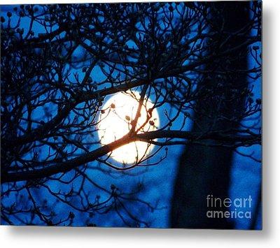 April Morning Moon Metal Print by Judy Via-Wolff