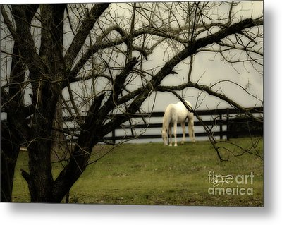 April Showers Metal Print by Cris Hayes