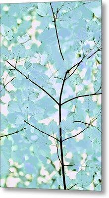 Aqua Blues Greens Leaves Melody Metal Print by Jennie Marie Schell