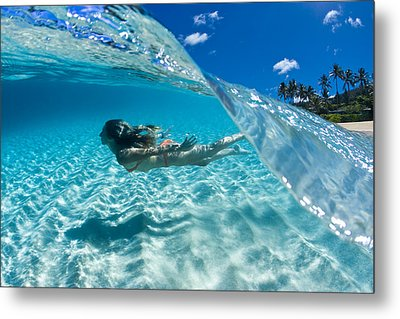Aqua Dive Metal Print by Sean Davey