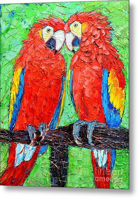 Ara Love A Moment Of Tenderness Between Two Scarlet Macaw Parrots Metal Print