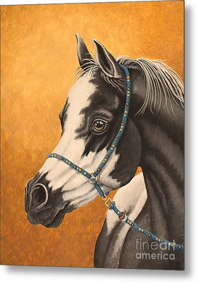 Arabian Paint Metal Print by Tish Wynne