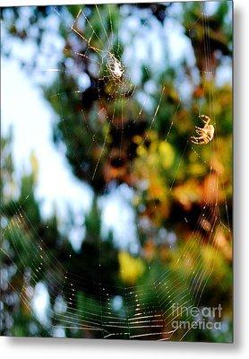 Arachnid Art Metal Print