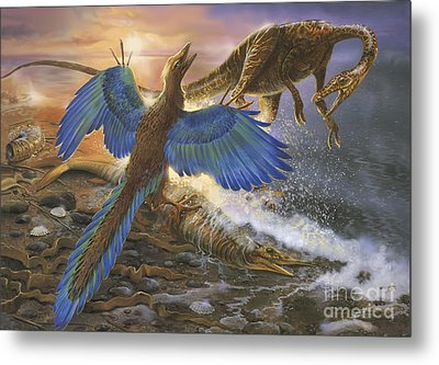 Archaeopteryx Defending Its Prey Metal Print by Jan Sovak