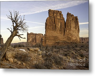 The Organ And The Tower Of Babel Metal Print by Tim Moore