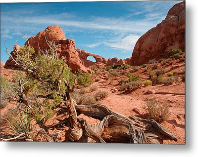 Arches National Park Metal Print by Donald Fink