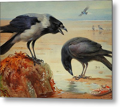 Archibald Thorburn Metal Print by Celestial Images