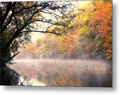Arching Tree On The Current River Metal Print by Marty Koch