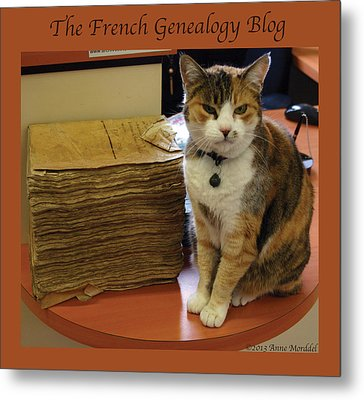 Archives Cat With Fgb Border Metal Print by A Morddel