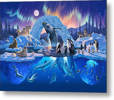 Arctic Harmony Metal Print by Chris Heitt