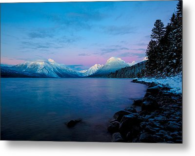 Metal Print featuring the photograph Arctic Slumber by Aaron Aldrich