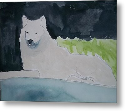 Arctic Wolf Watercolor On Paper Metal Print by William Sahir House