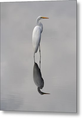 Metal Print featuring the photograph Argent Mirror by Paul Rebmann