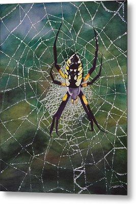 Argiope Web Metal Print by Christopher Reid