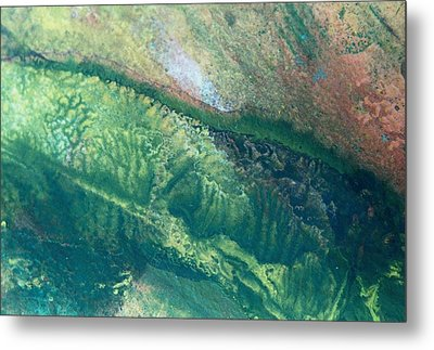 Ariel View Of Venus Metal Print by James Welch