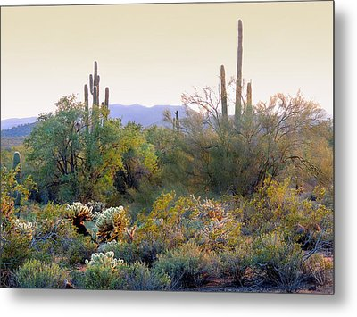 Arizona Spirit Metal Print