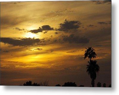 Arizona Sunset Metal Print by David Rizzo