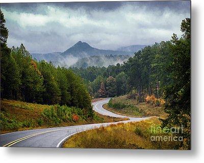 Arkansas Logging Road  Metal Print by Richard Mason