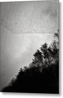 Arkansas Trees Metal Print by H James Hoff