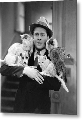 Armful Of Cats And Dogs Metal Print by Underwood Archives