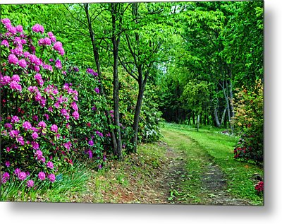 Around The Bend Metal Print by Kenny Francis