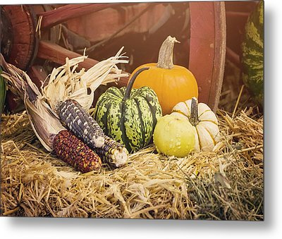 Arrival Of Autumn Metal Print by Heather Applegate