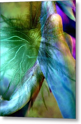 Art Of Deception Metal Print by Shirley Sirois