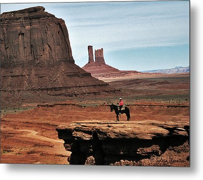 Metal Print featuring the photograph As Far As The Eye Can See by Sylvia Thornton
