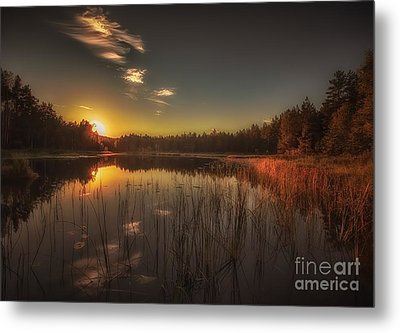 Metal Print featuring the photograph As In A Dream by Rose-Maries Pictures