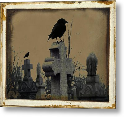 Dark Aged Crow Graveyard Metal Print by Gothicrow Images