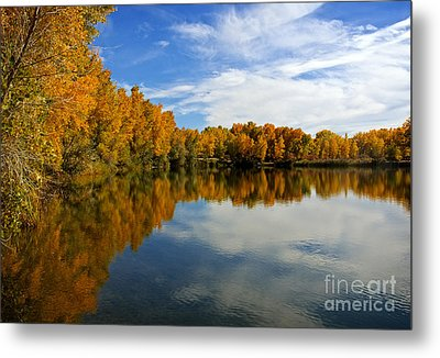 As The Leaves Turn Metal Print by Bob Hislop