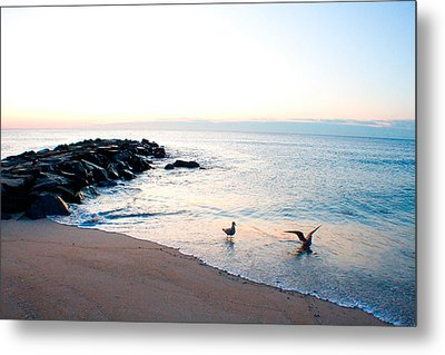 Metal Print featuring the photograph Asbury Seagulls by Jon Emery
