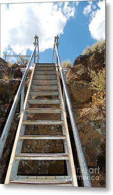 Metal Print featuring the photograph Ascending by Debra Thompson