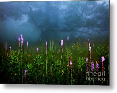 Ascension II - Blue Ridge Parkway Metal Print by Dan Carmichael