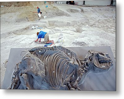 Ashfall Fossil Beds Display Metal Print