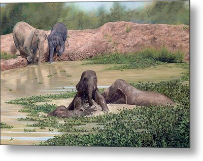 Asian Elephants - In Support Of Boon Lott's Elephant Sanctuary Metal Print