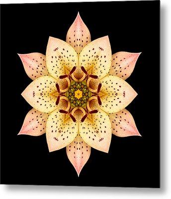 Asiatic Lily Flower Mandala Metal Print