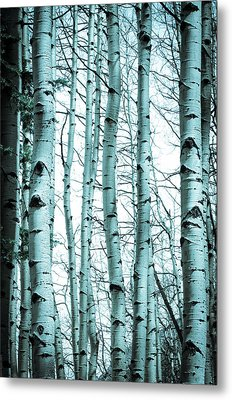 Aspen Blues Metal Print